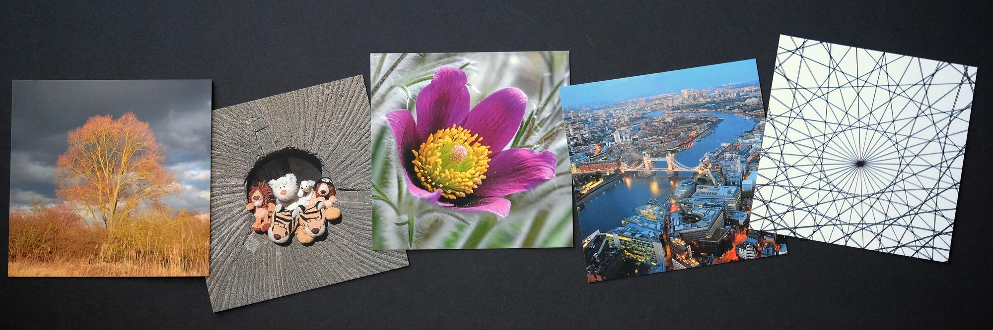 square postcards.
